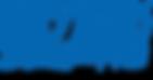 Blizzard_Entertainment_Logo.svg_.png