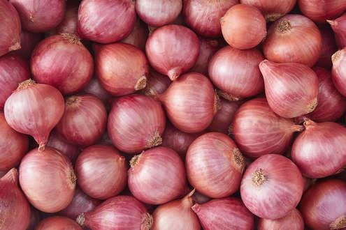 onion pickle.jpg