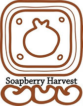 soapberry harvest, non-ionic, Hypoallergenic, echo-friendly, clean