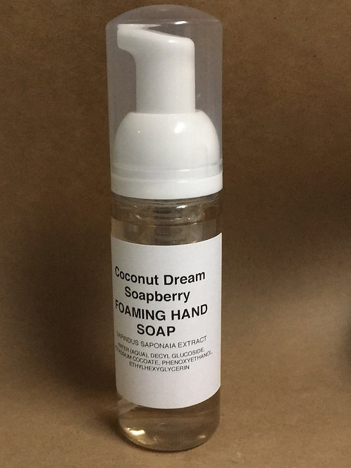 Coconut Dream Foaming Hand Soap