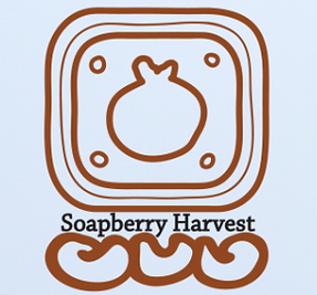 Soapberry Harvest, the worlds best, echo-friendly, non-ionic, organic, sustainable cleanser