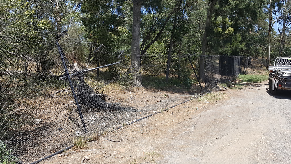 Temp fence hire Melbourne - Broken Fence Before