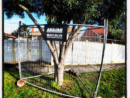 High fences in Happy Highett