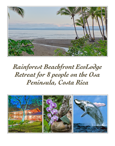 CR Rainforest Lodge for 8