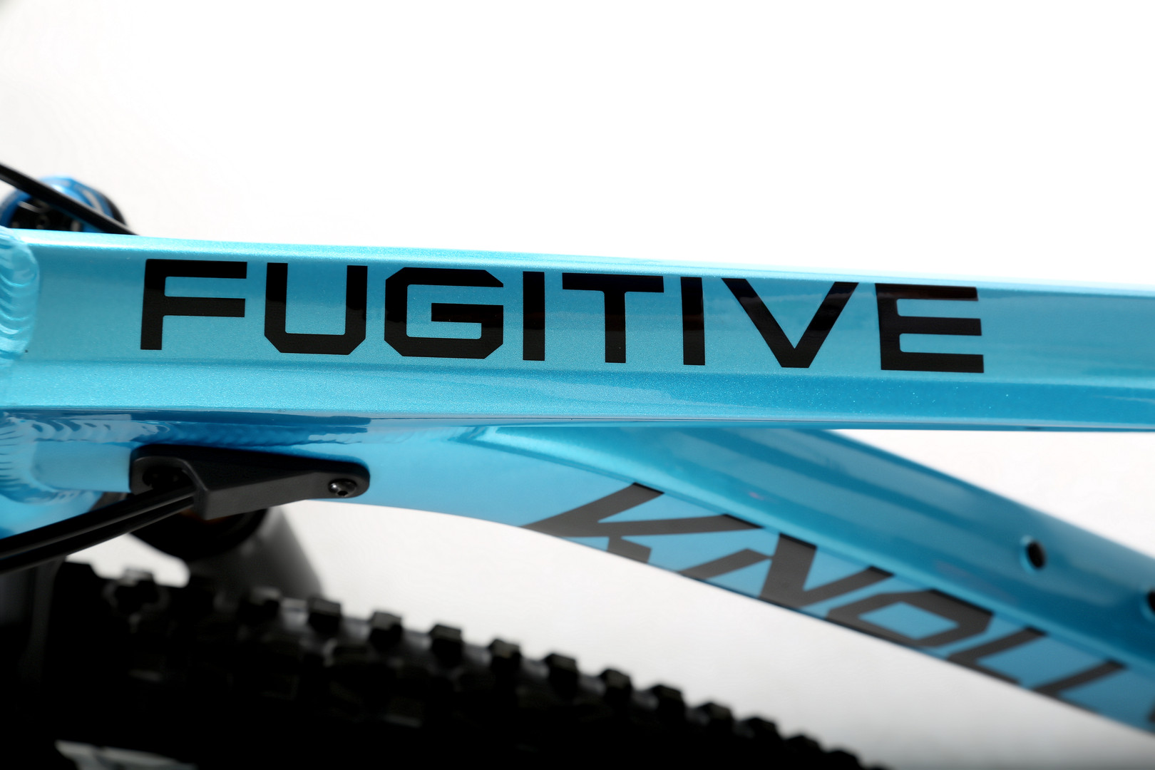 Fugitive Blue TT 2020-01-21.jpg