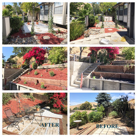 Before and after pics of backyard