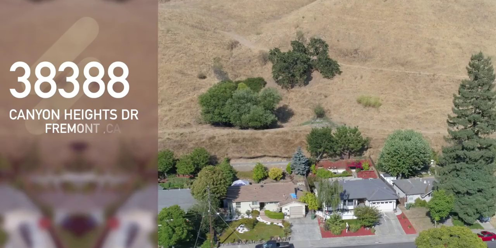 38388 Canyon Heights Dr,Fremont
