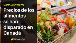 Precios de los alimentos se han disparado en Canadá