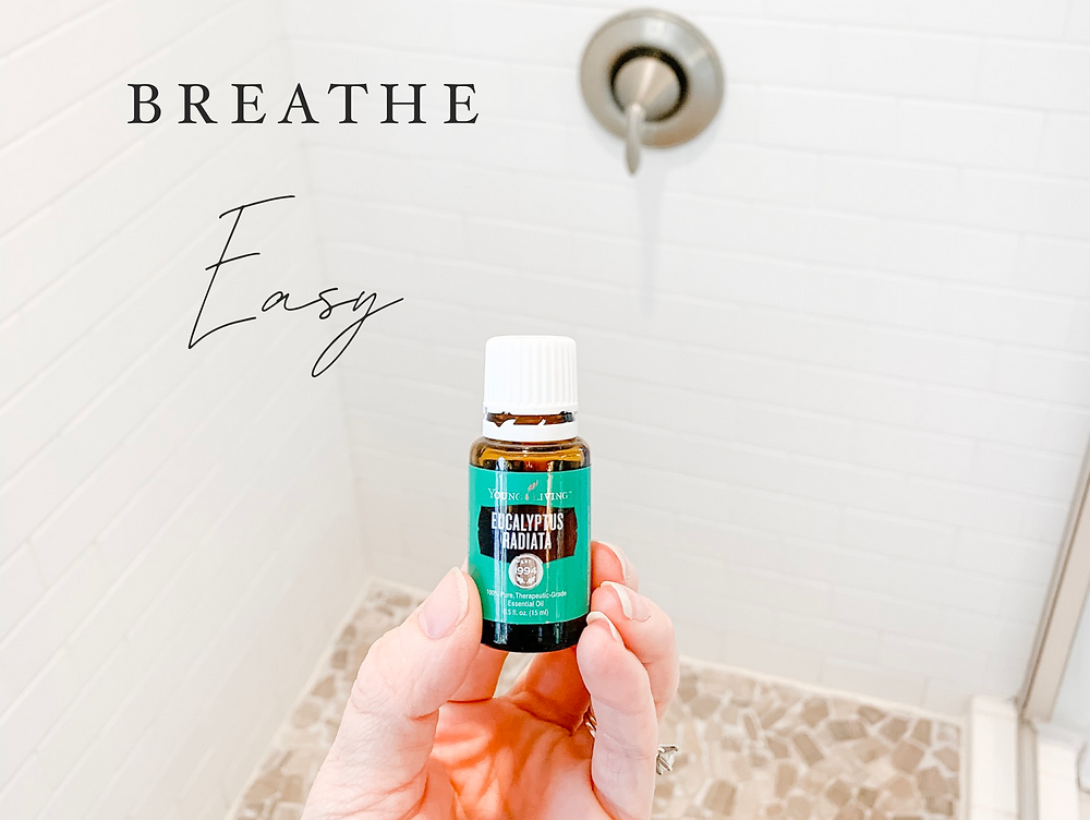 Eucalyptus essential oil, respiratory support, immune support, stuffy nose remedy