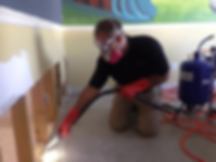 drywall mold removal and remediation