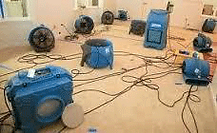 Water damage removal and structural drying