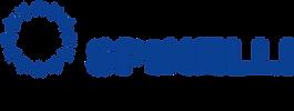 1200px-Spinelli_Group_logo.svg.png
