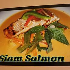 H.9    Siam Salmon