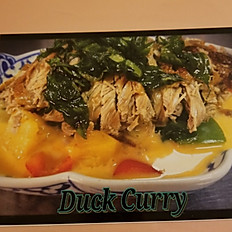 H.11   Curry Duck