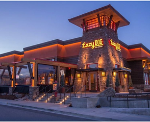 Lazy Dog Restaurant & Bar (Houston)