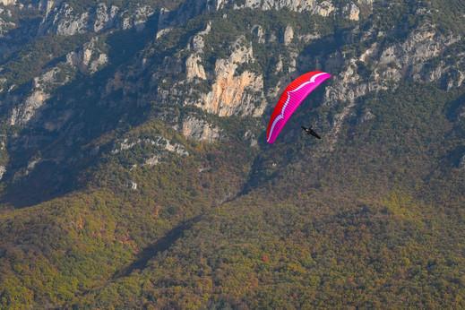 alpina3_lowres-1.jpg-nggid03116-ngg0dyn-