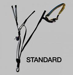 Standard-Risers-Swift-4-768x787.jpg