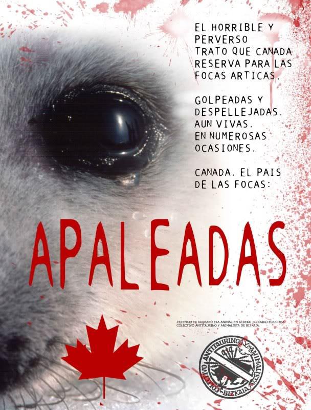 NO A La Matanza de Focas en Canadá!