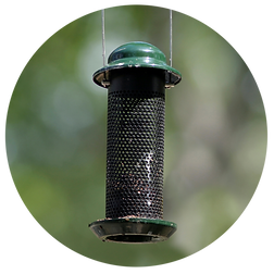 Wire-Mesh-Feeder.png