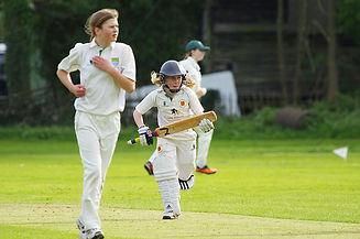 cricket-724622_640.jpg