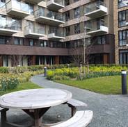 7EVEN Amsterdam _ Courtyard