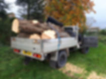Timber removal