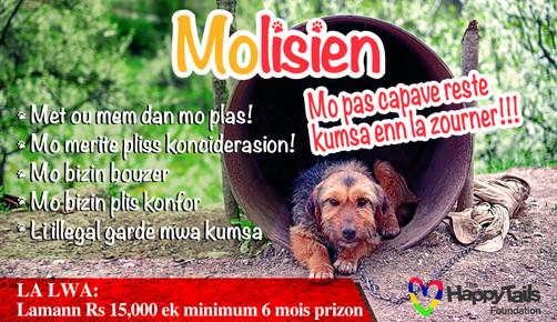 """Molisien"" campaign no.2 || WEEKEND DIMANCHE"