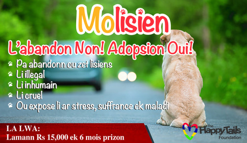 "Our ""Molisien"" campaign begins in the local Sunday Paper 