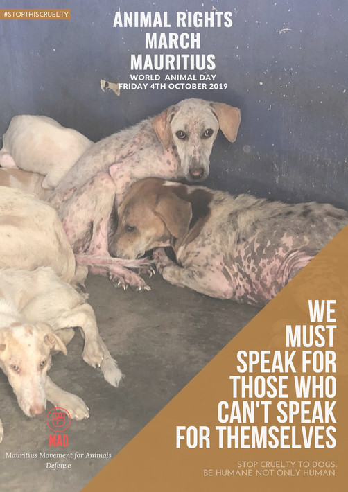 WORLD ANIMAL DAY || MARCH IN THE CAPITAL