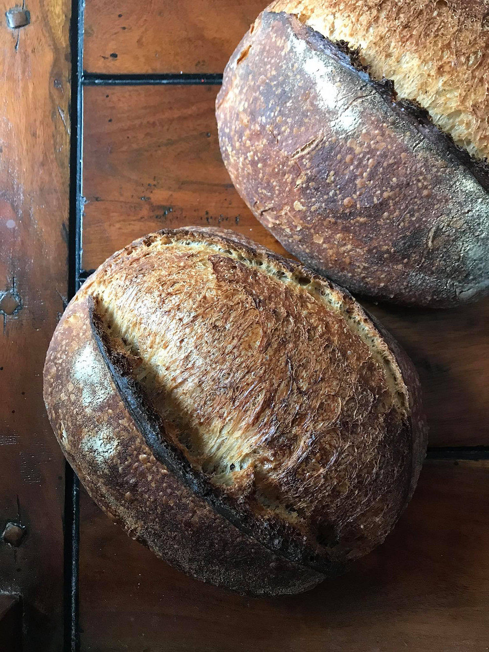Sourdough Starter from scratch - step by step guide