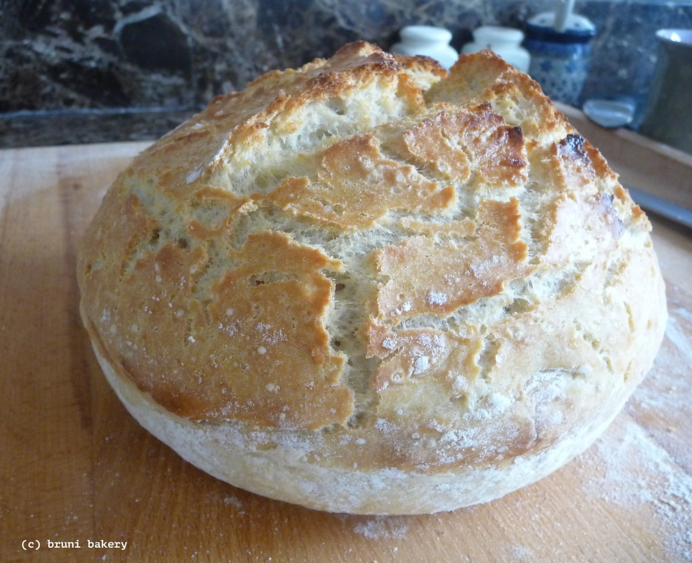 Homemade No Knead Bread