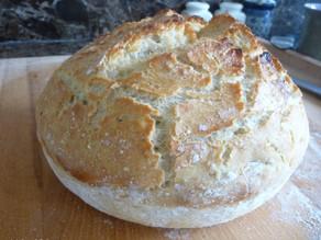 Homemade No Knead Bread