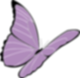 butterfly-159898_960_720.png