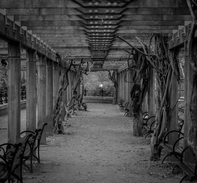 Covered Walkway in Central Park