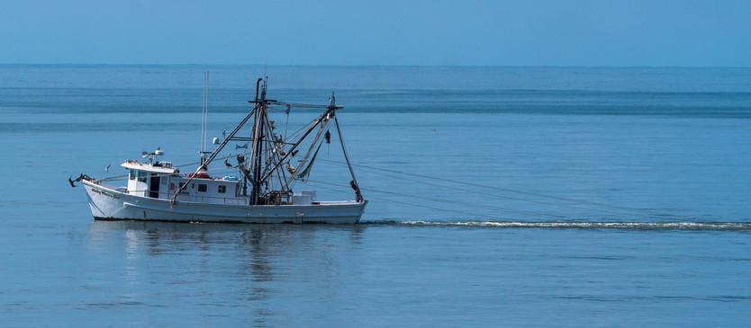 Trawler at Work