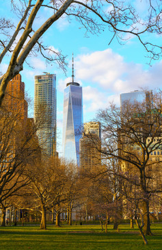 Freedom Tower from Battery Park at Sunset