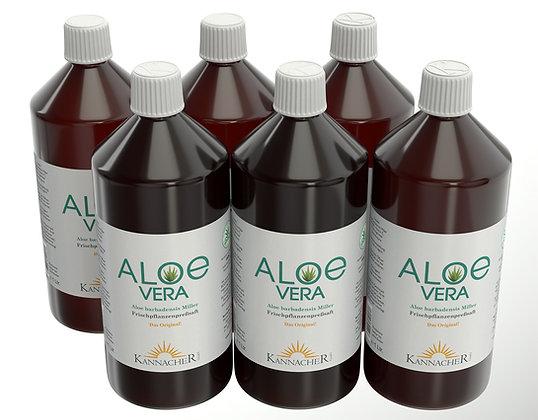 Aloe Vera - Frischpflanzensaft 100 % 6er Pack