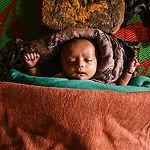 www film preview Скитания. История Рохин