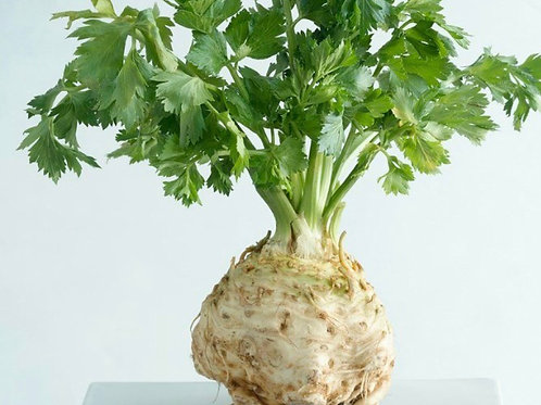 Organic Celeriac