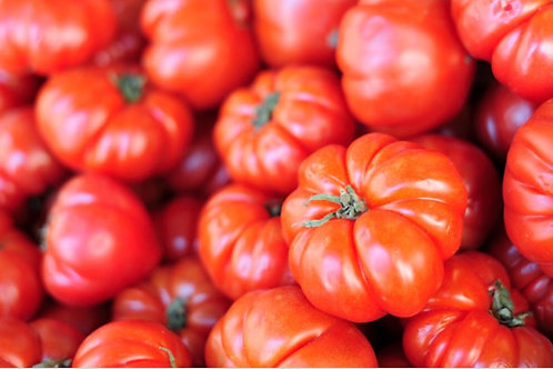 Organic Beef tomatoes