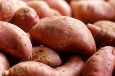 Organic Sweet Potato (Spain)