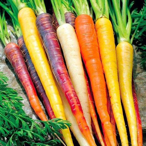 Organic Rainbow Carrots (UK)