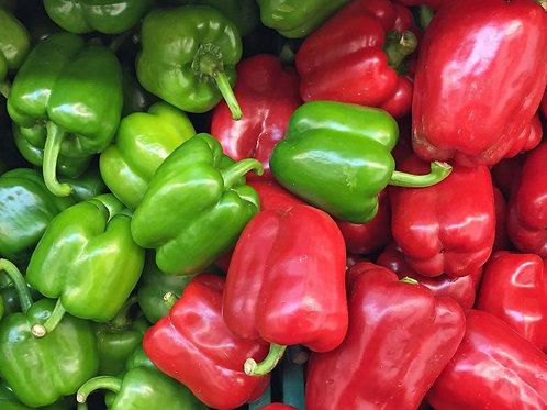 Organic Peppers (Spain)