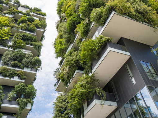 What is biophilic architecture?