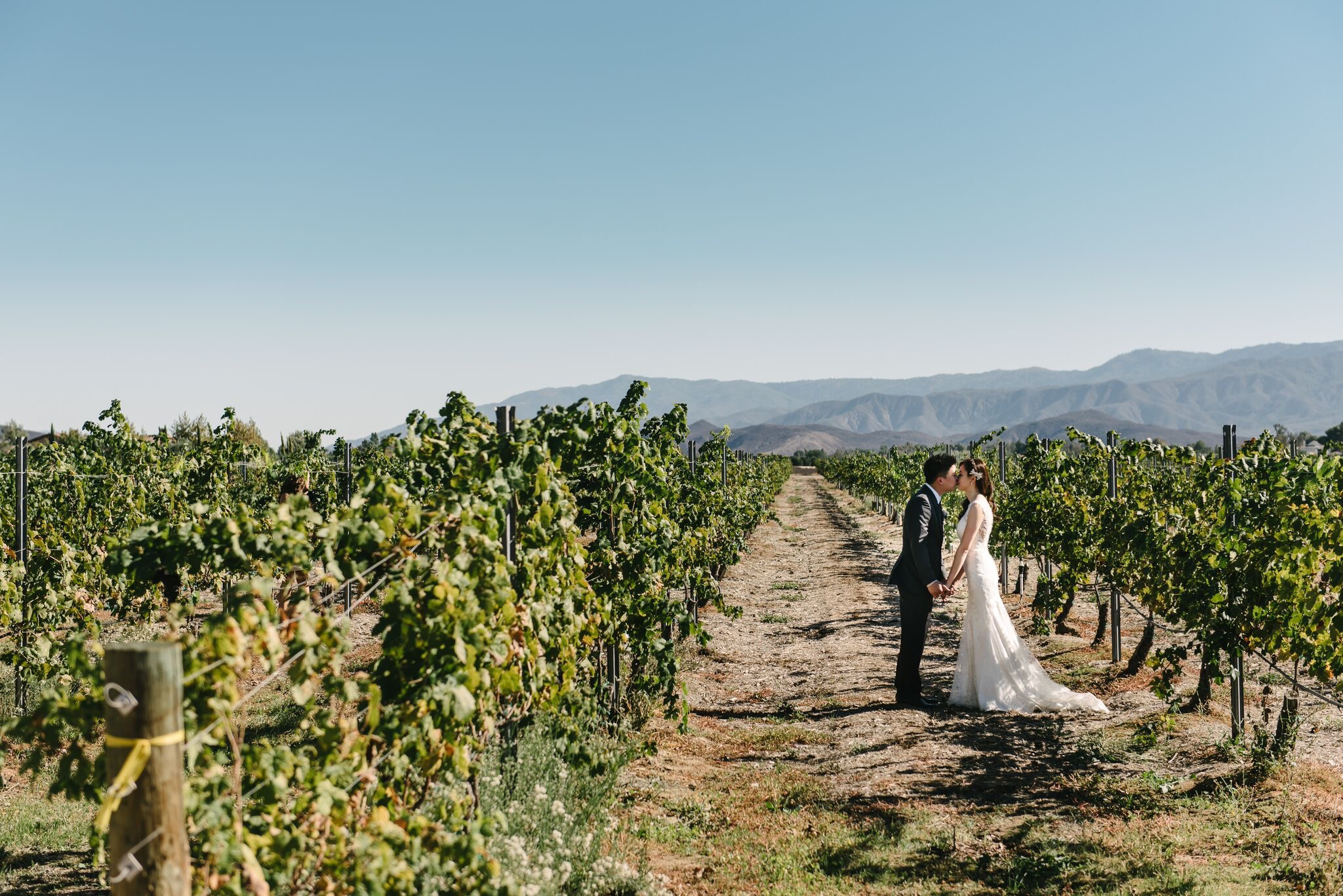 Ponte Winery Temecula Wedding