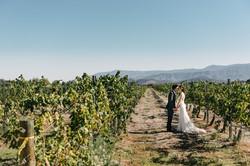 Ponte Winery Temecula Wedding