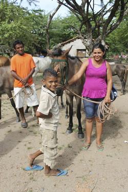 Human Charities and NGO's