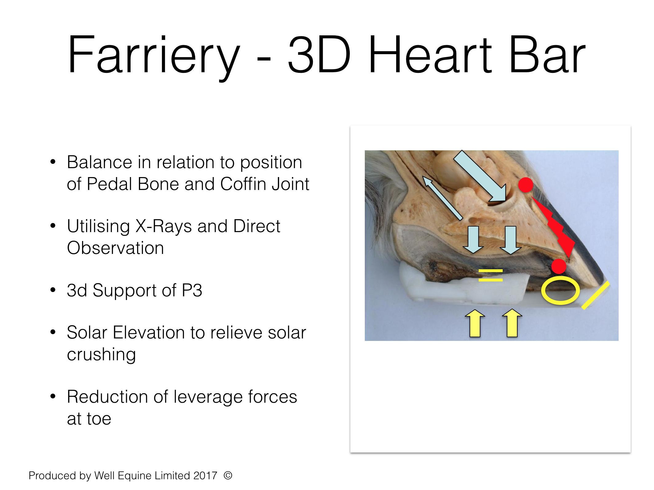 Farriery 3D Support