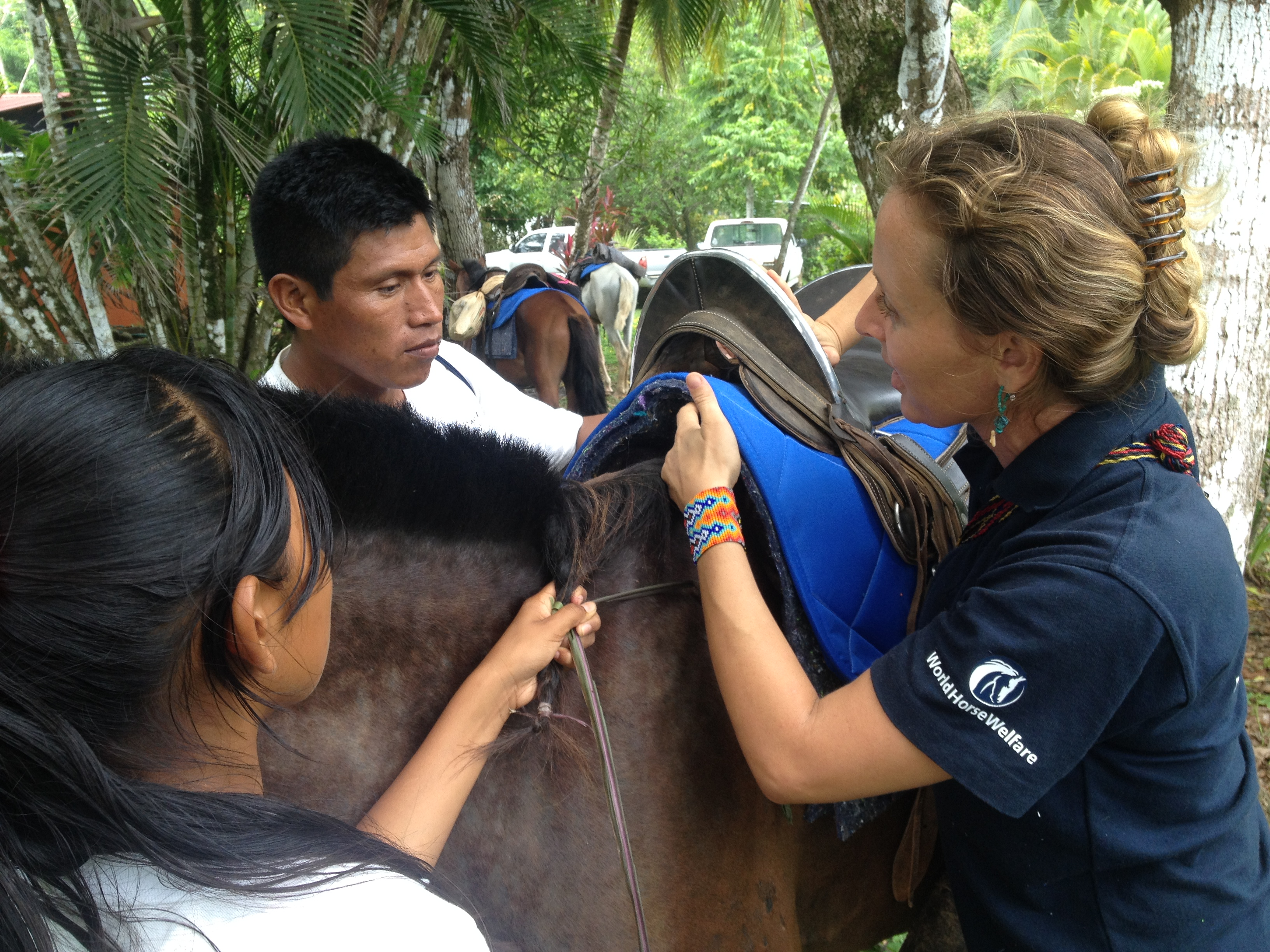 Community Based Equine Advisor Training