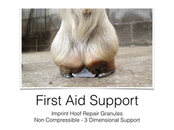 First Aid Support